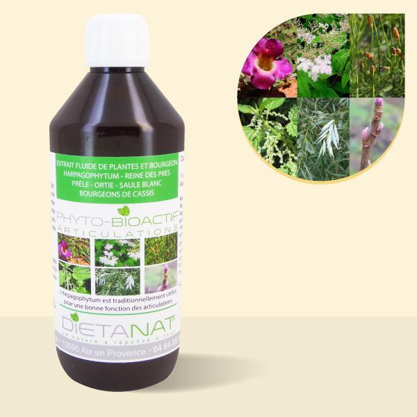 Complexe Articulations - 500ml Extrait de plantes fraiches et bourgeons bio