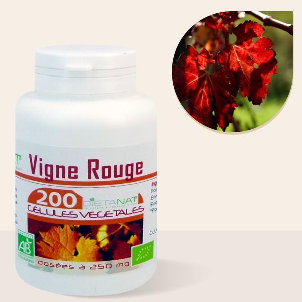 Vigne Rouge bio - 200 Gélules végétales 250mg