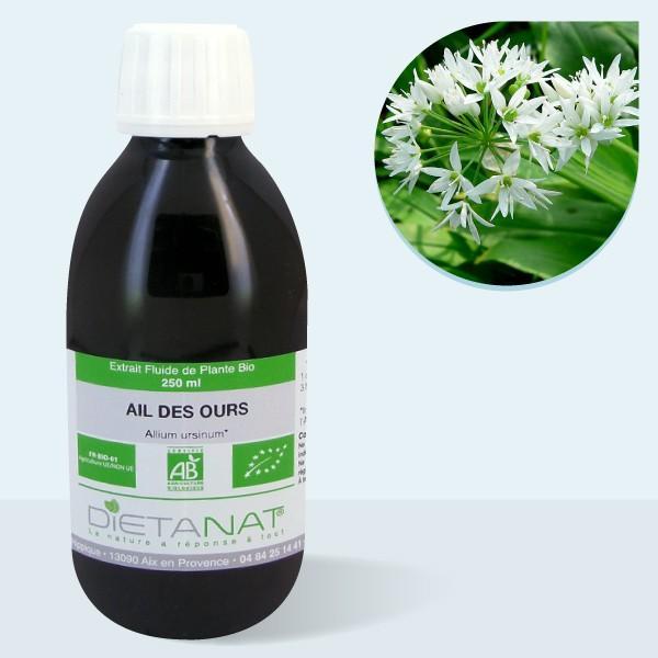 Ail des Ours bio - 250ml Extrait de plantes fraiches bio