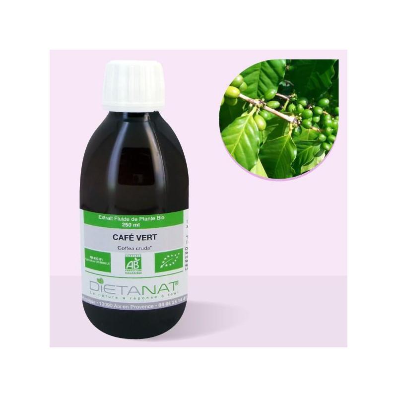 Café Vert bio - 250ml Extrait de plantes fraiches bio