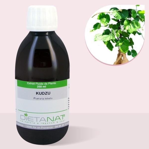 Kudzu - 250ml Extrait de plantes fraiches