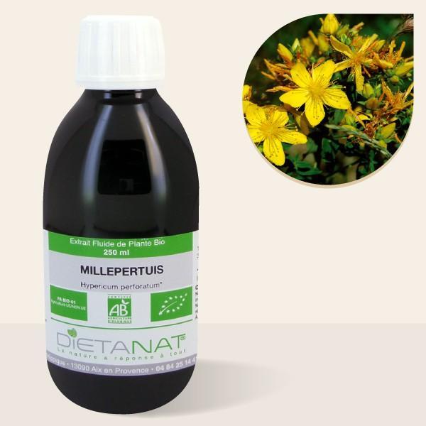 Millepertuis bio - 250ml Extrait de plantes fraiches bio