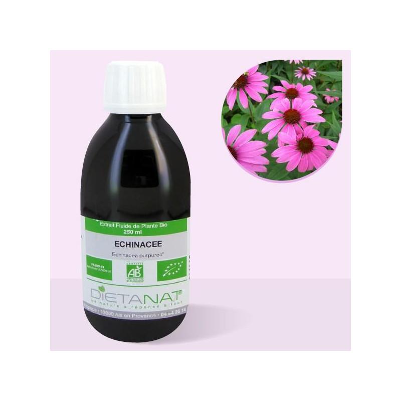 Echinacée bio - 250ml Extrait de plantes fraiches bio de Dietanat