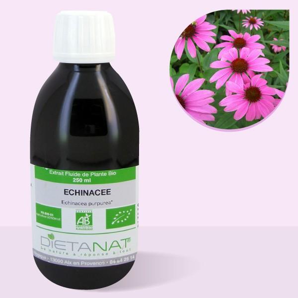 Echinacéa angustifolia bio - 250ml Extrait de plantes fraiches bio