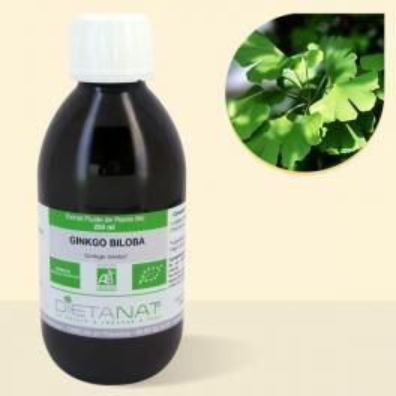 Ginkgo Biloba bio - 250ml Extrait de plantes fraiches bio