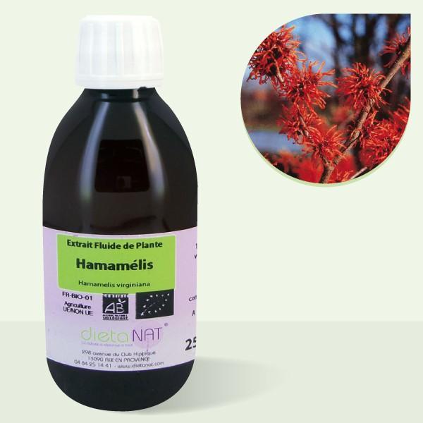 Hamamelis virginiana bio - 250ml Extrait de plantes fraiches bio