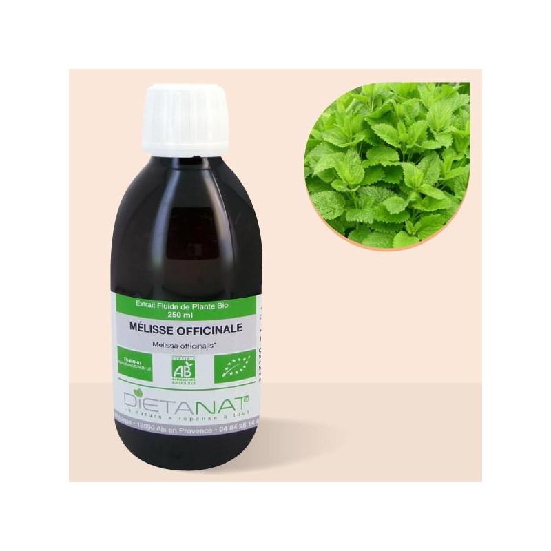Mélisse bio - 250ml Extrait de plantes fraiches bio
