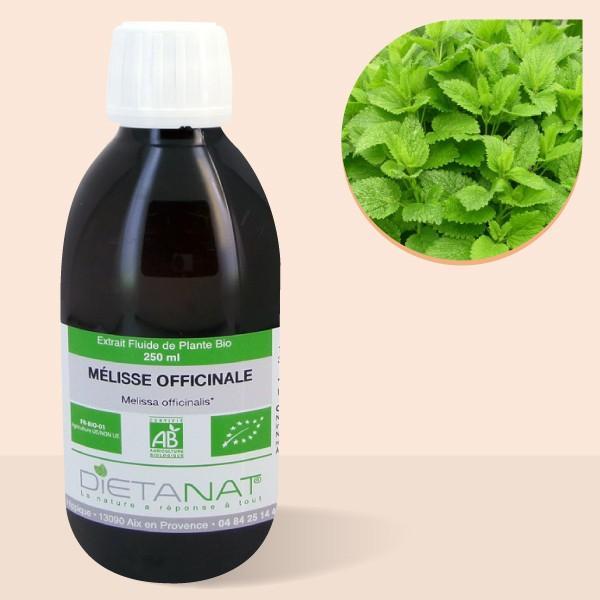 Mélisse officinale bio - 250ml Extrait de plantes fraiches bio