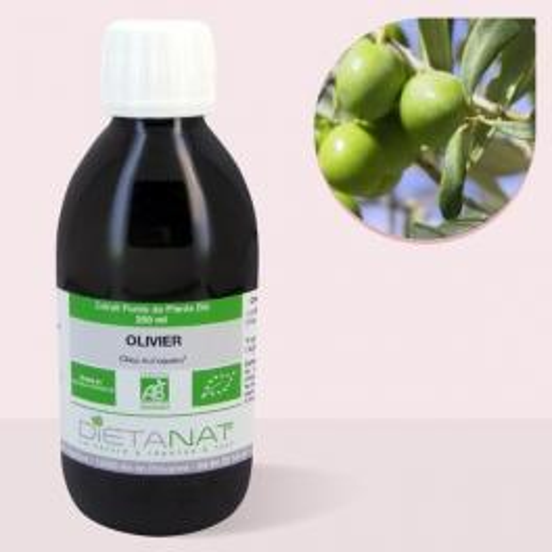 Olivier bio - 250ml Extrait de plantes fraiches bio