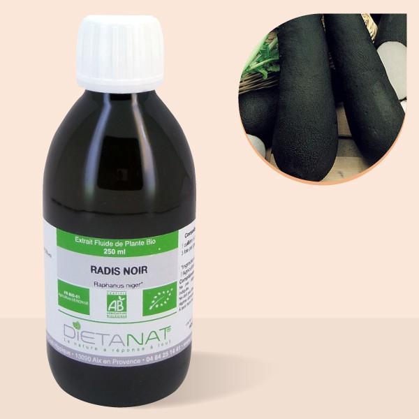 Radis Noir bio - 250ml Extrait de plantes fraiches bio