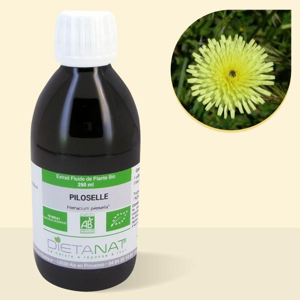Piloselle bio - 250ml Extrait de plantes fraiches bio