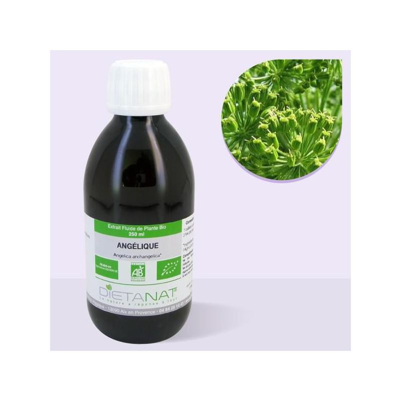 Angélique bio - 250ml Extrait de plantes fraiches bio