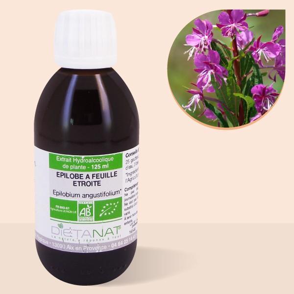 Épilobe bio - 125ml Teinture mère bio