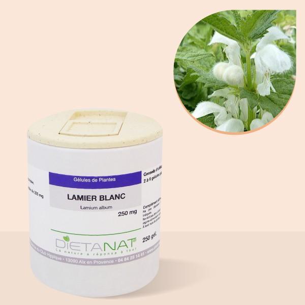 Lamier blanc Ortie blanche - 250 gélules végétales 250mg